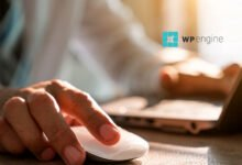 Photo of WP Engine For Developer: Make Your Shining WordPress Website