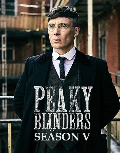 netflix peaky blinders season 5